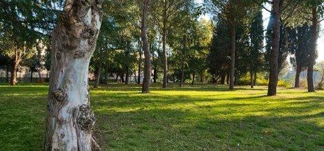 Park ele green park hotel pamphili rome, italy
